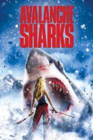 Avalanche Sharks ฉลามหิมะล้านปี (2014)