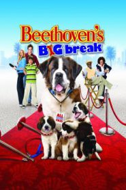 Beethoven's Big Break บีโธเฟน ยอดคุณหมาดาราจำเป็น (2008)