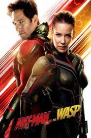 Ant-Man and the Wasp แอนท์-แมน และ เดอะ วอสพ์ (2018)