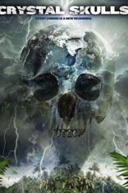 Crystal Skulls 12 กะโหลกหยุดหายนะโลก (2014)