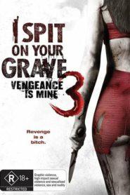 I Spit on Your Grave: Vengeance is Mine เดนนรกต้องตาย 3 (2015) (ภาค 3)