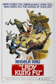 Lady Kung Fu พยัคฆ์สาวหมัดเหล็ก