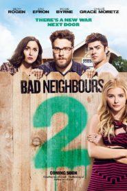 Neighbors 2: Sorority Rising เพื่อนบ้านมหา(บรร)ลัย 2 (2016)
