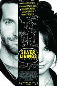 Silver Linings Playbook ลุกขึ้นใหม่ หัวใจมีเธอ (2012)