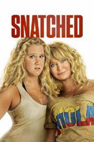 Snatched แม่…ลูก…ลุย (2017)