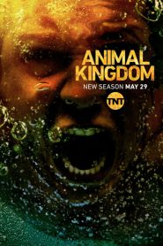 Animal Kingdom Season 3 [Soundtrack บรรยายไทย]