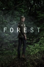 The Forest Season 1 [Soundtrack บรรยายไทย]