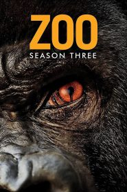 Zoo Season 3 สัตว์ สยอง โลก ปี 3 [พากษ์ไทย]