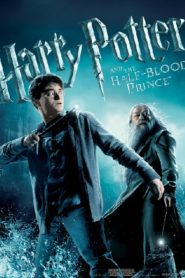 Harry Potter แฮร์รี่ พอตเตอร์ (ภาค 6)