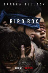 Bird Box มอง อย่าให้เห็น (2018)