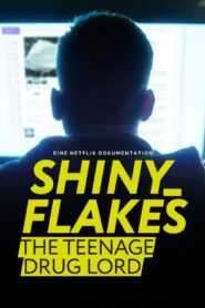Shiny Flakes: The Teenage Drug Lord